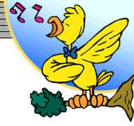 Tweety Tunes Tweety Bird